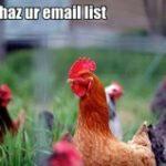 Da' adresă de e-mail nu aveţi?