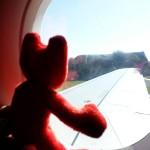 italia 2013 - 01 mufica in avionul wizzair