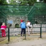 La grădina zoologică din Hunedoara