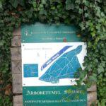 Vizită în HD: Arboretumul [Parcul Dendrologic] din Simeria