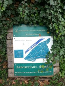 arboretumul simeria - parcul dendrologic