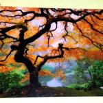 Pentru un decor original, încercaţi un tablou luminos