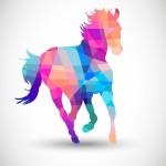 EQVAGEL, unguent pentru cai și pentru oameni