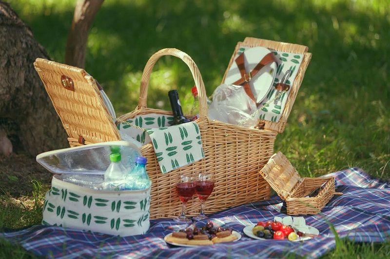 picnic elegant 1
